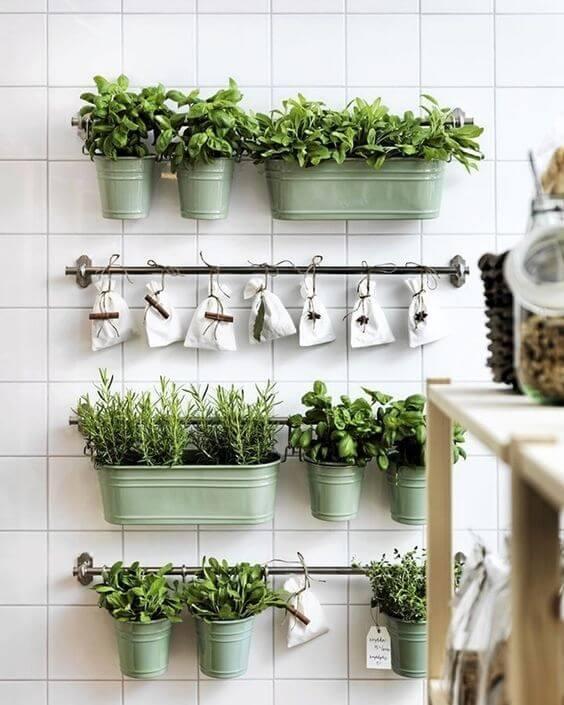 Vegetação - como decorar o apartamento alugado.